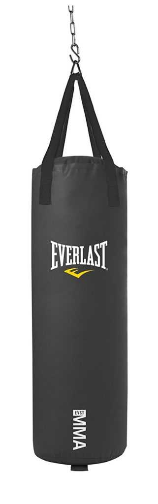 Best Punching Bag For Apartment Home Gyms Reviews